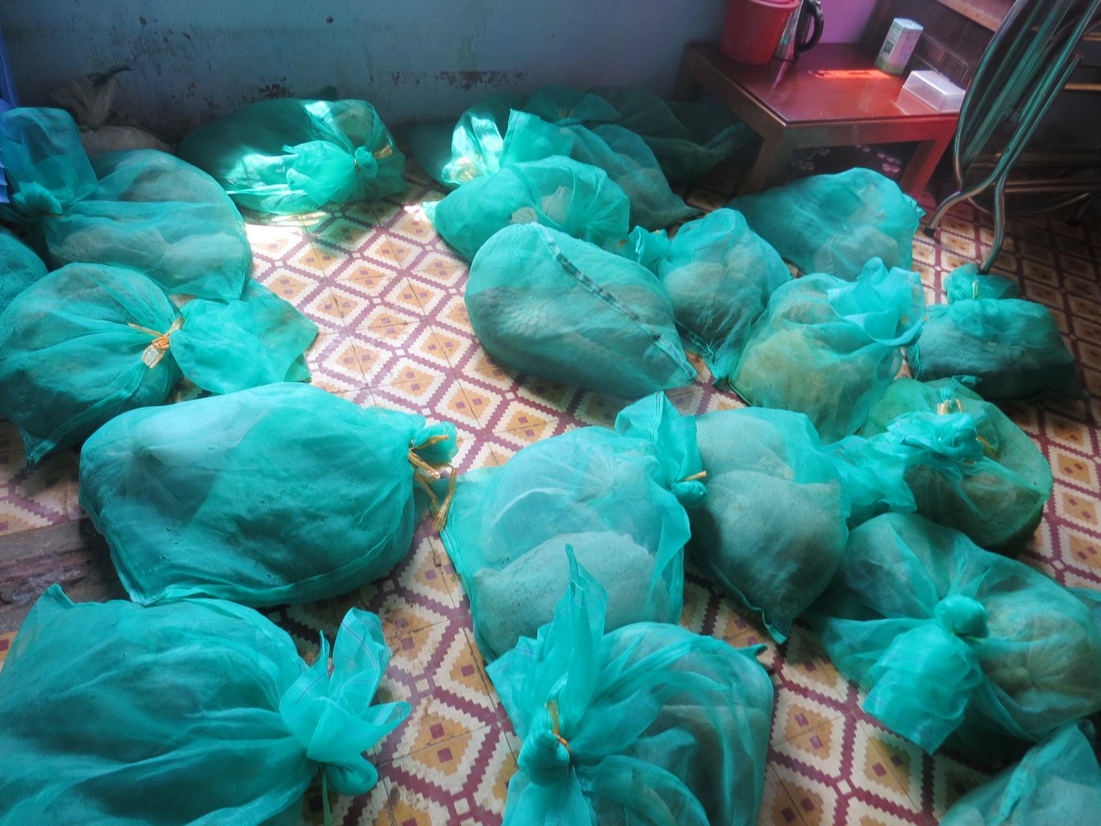 Bắt xe cứu thương chở lậu gần 256kg động vật hoang dã - Ảnh 1