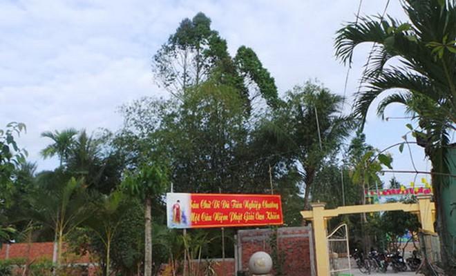 Sự thật người dân kéo nhau đi xem Phật hiển linh trên cây - Ảnh 3