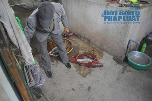 Chùm ảnh: Cá kho làng Vũ Đại vào tết - Ảnh 5