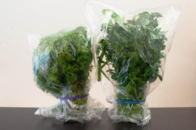 Mẹo hay bảo quản rau củ tươi ngon nửa tháng liền - Ảnh 2