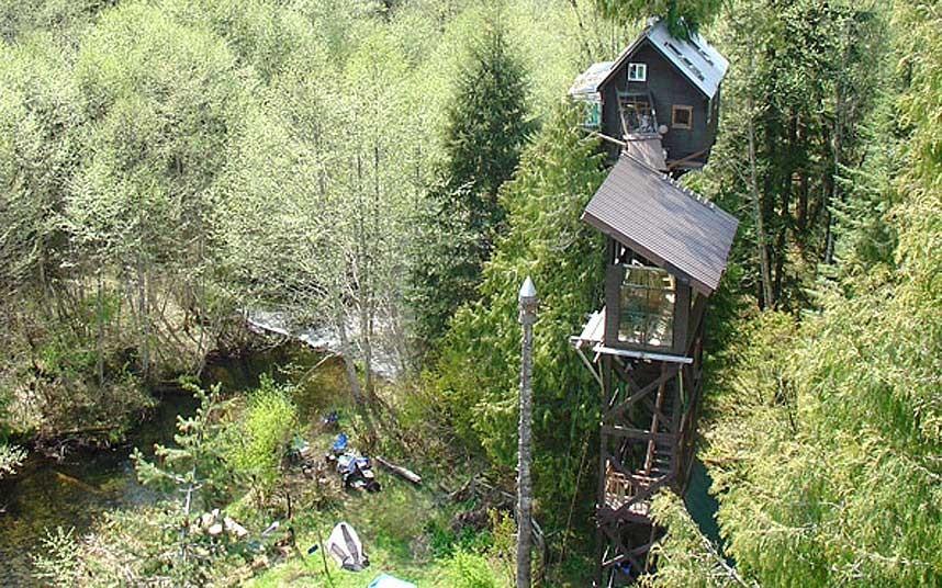 Ngắm những công trình kiến trúc 'vắt vẻo' trên cây cao - Ảnh 4