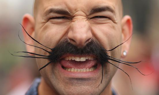 Những bộ râu kỳ dị nhất thế giới - Ảnh 3