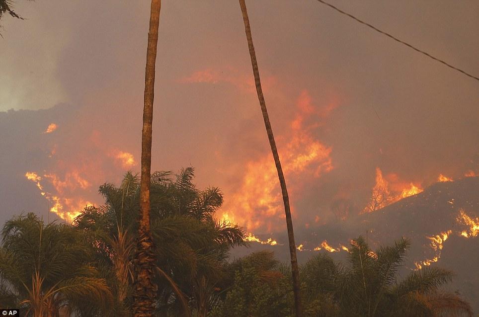 Mỹ: Tai họa cháy rừng vì đốt lửa trại - Ảnh 4