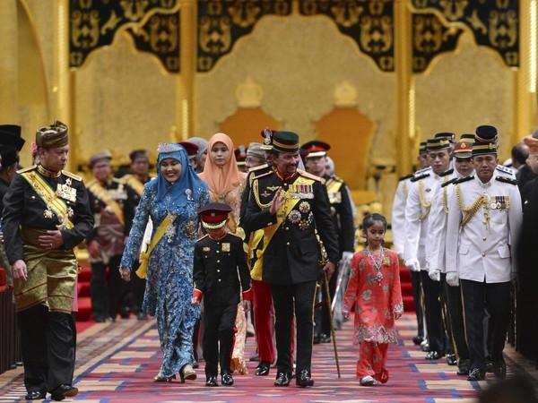 Limousine dát vàng 298 tỷ đồng của quốc vương Brunei - Ảnh 6