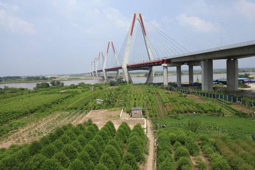 Cầu dây văng dài nhất Việt Nam trước ngày thông xe - Ảnh 1