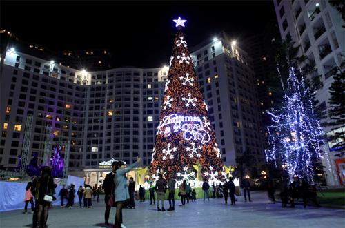 """Những cây thông Noel """"độc"""" nhất Việt Nam - Ảnh 3"""