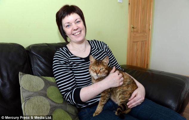 Hội ngộ chú mèo sau 11 năm mất tích - Ảnh 1