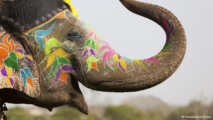 Lễ hội Holi đầy màu sắc ở Ấn Độ - Ảnh 10