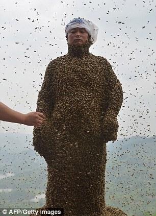 """Chuyện lạ: Người """"hút"""" gần nửa triệu con ong - Ảnh 3"""