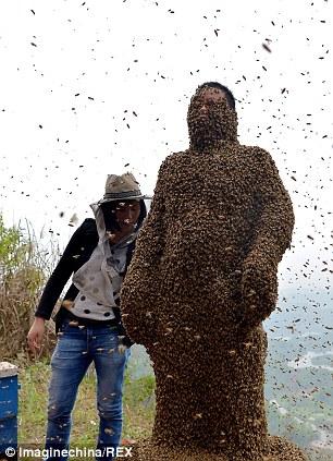 """Chuyện lạ: Người """"hút"""" gần nửa triệu con ong - Ảnh 6"""