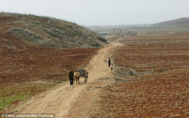 """Hình ảnh cuộc sống """"tương phản"""" giữa hai miền Triều Tiên - Ảnh 11"""
