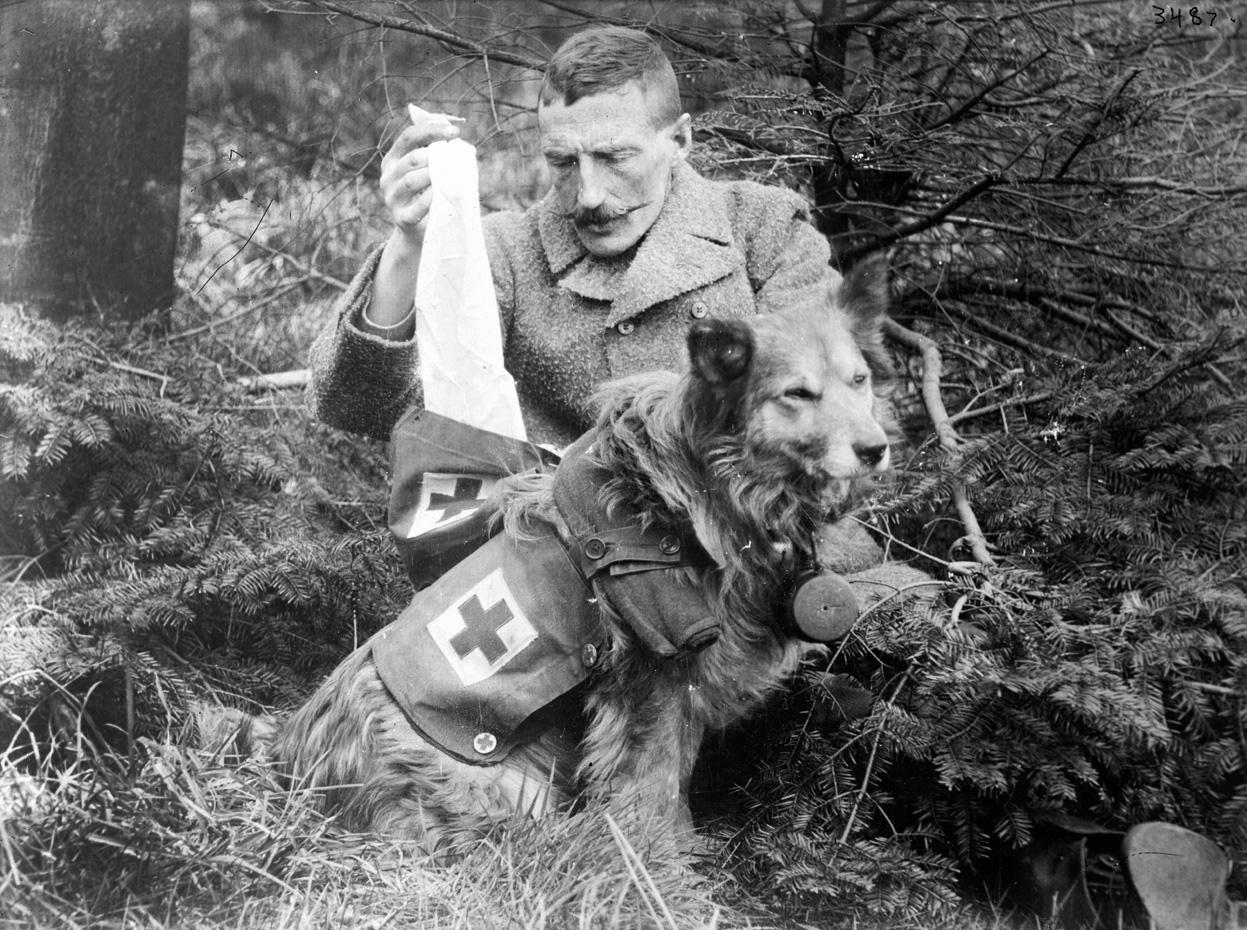 """Những """"chiến binh đặc biệt"""" trong Chiến tranh Thế giới thứ nhất - Ảnh 3"""