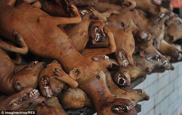 Hãi hùng lễ hội thịt chó ở Trung Quốc - Ảnh 3