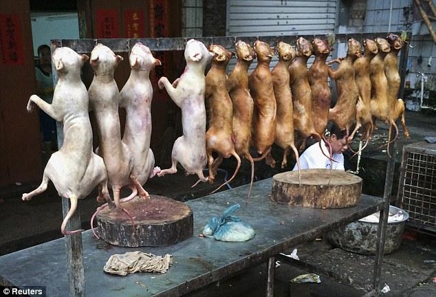 Hãi hùng lễ hội thịt chó ở Trung Quốc - Ảnh 5