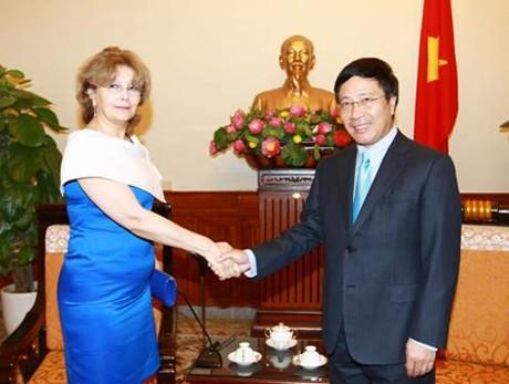 Phó Thủ tướng Phạm Bình Minh tiếp Đại diện Tổng thống Mỹ - Ảnh 2