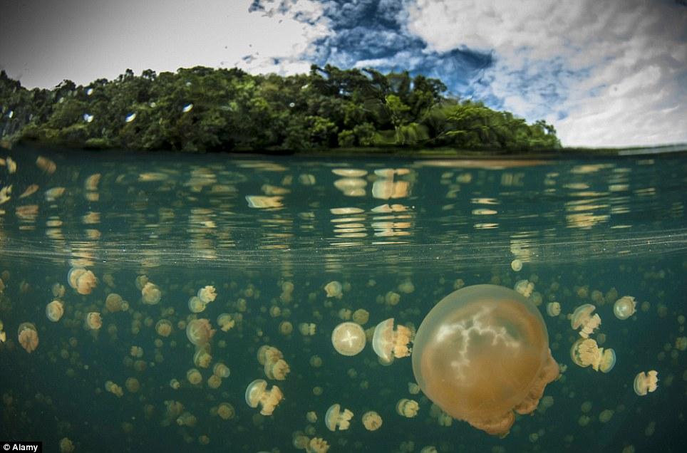 Khám phá 10 hồ nước kỳ lạ trên thế giới - Ảnh 1