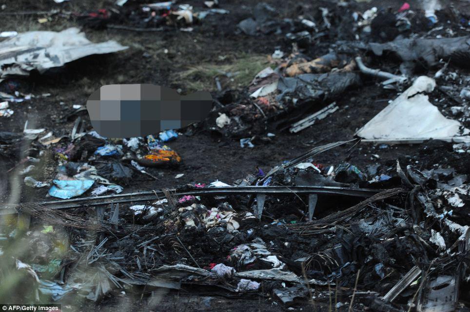 Cận cảnh vụ rơi máy bay Malaysia, 295 người thiệt mạng - Ảnh 3