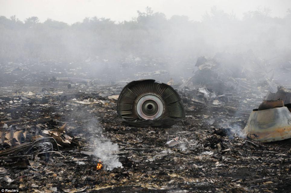 Cận cảnh vụ rơi máy bay Malaysia, 295 người thiệt mạng - Ảnh 4