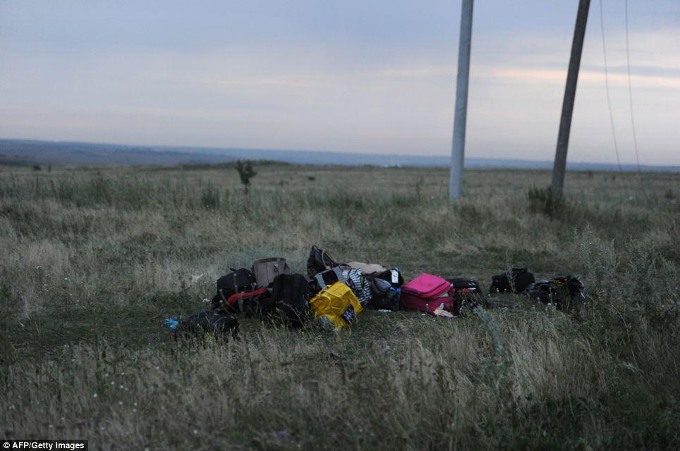 Cận cảnh vụ rơi máy bay Malaysia, 295 người thiệt mạng - Ảnh 9