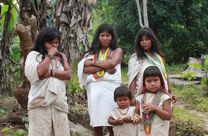 Kỳ lạ bộ tộc sống giữa rừng, cực kỳ thông thái - Ảnh 12