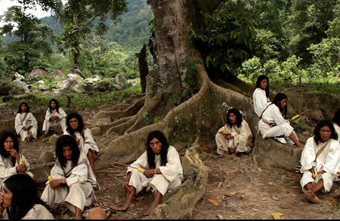 Kỳ lạ bộ tộc sống giữa rừng, cực kỳ thông thái - Ảnh 3