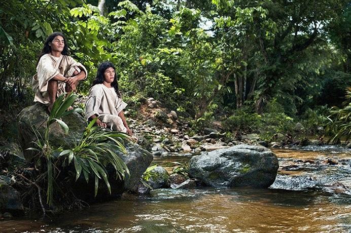 Kỳ lạ bộ tộc sống giữa rừng, cực kỳ thông thái - Ảnh 8
