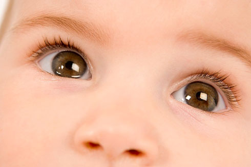 4 bước đơn giản cho đôi mắt luôn khỏe mạnh - Ảnh 3