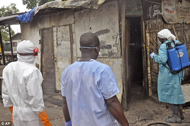 Kinh hoàng chó ăn thịt thi thể bệnh nhân Ebola - Ảnh 2
