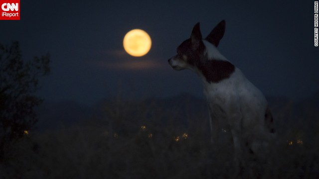 """""""Siêu trăng"""" sẽ xuất hiện vào đêm rằm tháng 7 - Ảnh 6"""