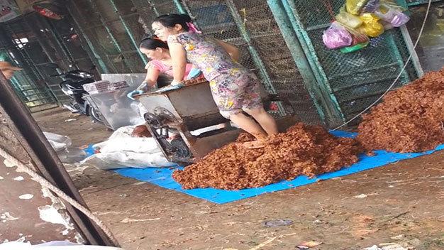 """Mì gạo sử dụng thuốc tẩy, măng chua ngâm... """"chất độc"""" - Ảnh 2"""