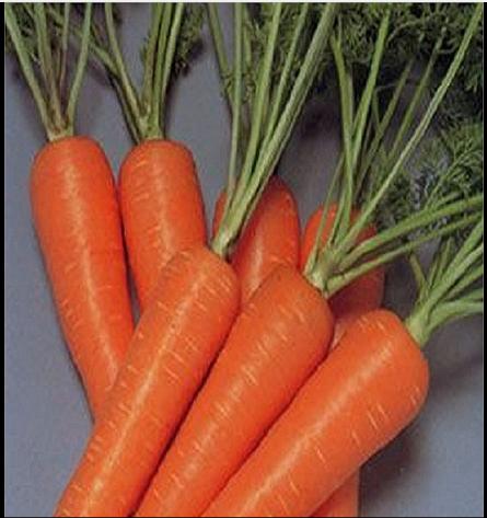 Ăn những loại rau này, gan bạn sẽ khỏe - Ảnh 6