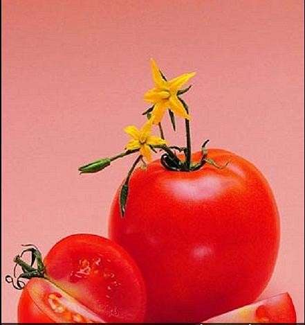 Ăn những loại rau này, gan bạn sẽ khỏe - Ảnh 7