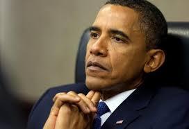 Tổng thống Obama thừa nhận vai trò của Mỹ trong khủng hoảng Ukraine - Ảnh 1