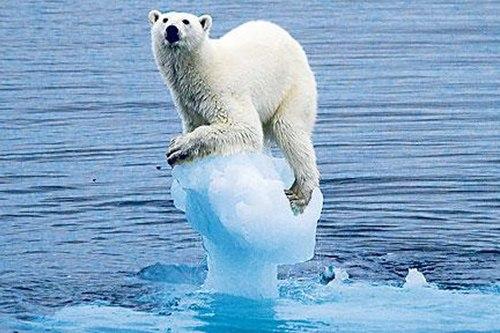 Biến đổi khí hậu: Hiểm họa lớn nhất đối với thế giới  - Ảnh 3