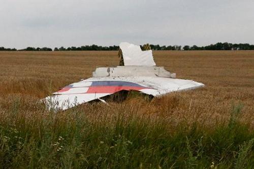 Phe nổi dậy Ukraina sẽ giao nộp hộp đen MH17 - Ảnh 2