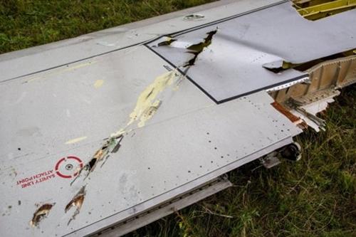 Ý kiến chuyên gia: MH17 có thể đã bị Su-25 bắn hạ  - Ảnh 1