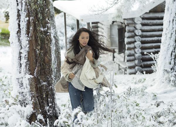 """Ngỡ ngàng cảnh """"tuyết rơi"""" trắng trời ở Đà Lạt - Ảnh 5"""