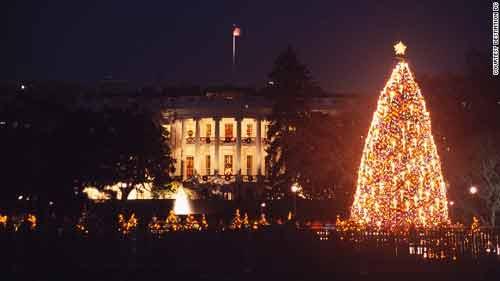Những cây thông Noel hoành tráng nhất thế giới năm 2013 - Ảnh 6
