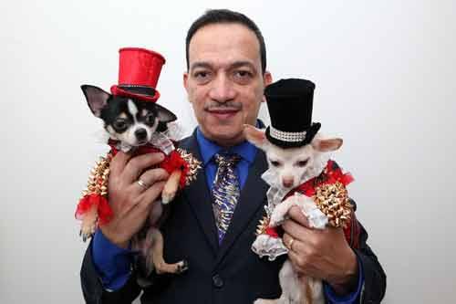 Những kiểu thời trang chó cực kỳ dễ thương - Ảnh 2