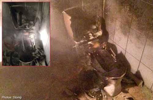 Phá hủy cả nhà vệ sinh vì tiêu diệt một con gián  - Ảnh 1