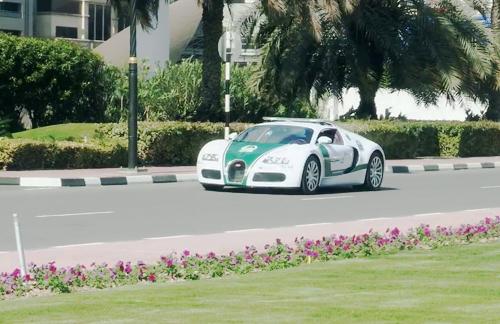 Bugatti Veyron trở thành siêu xe cảnh sát nhanh nhất thế giới - Ảnh 7