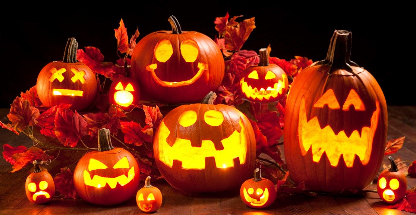 Halloween với những trái bí ngô kỳ bí, huyền ảo - Ảnh 4