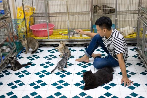 Những loài động vật giúp 9X kiếm hàng trăm triệu đồng mỗi năm - Ảnh 6