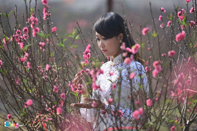 """Ngất ngây thiếu nữ Hà thành """"đọ sắc"""" bên vườn đào Nhật Tân - Ảnh 4"""