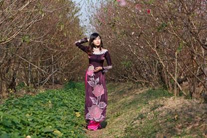"""Ngất ngây thiếu nữ Hà thành """"đọ sắc"""" bên vườn đào Nhật Tân - Ảnh 6"""