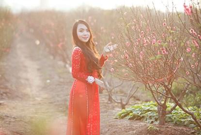 """Ngất ngây thiếu nữ Hà thành """"đọ sắc"""" bên vườn đào Nhật Tân - Ảnh 10"""