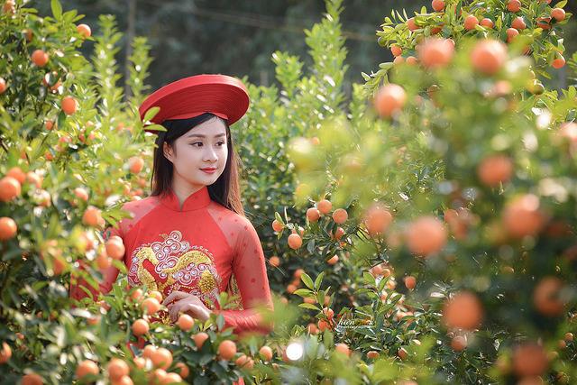 Mê mẩn với nhan sắc xinh đẹp của nữ sinh Kinh tế bên vườn quất  - Ảnh 2