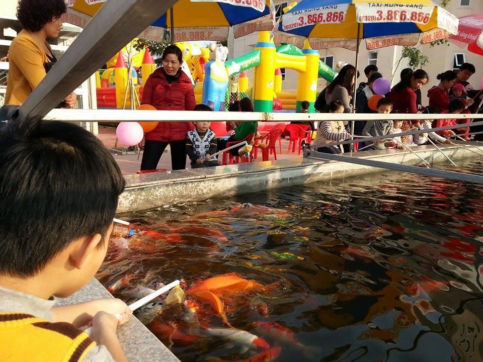 """Cá """"bú bình"""" đã xuất hiện ở Việt Nam - Ảnh 3"""