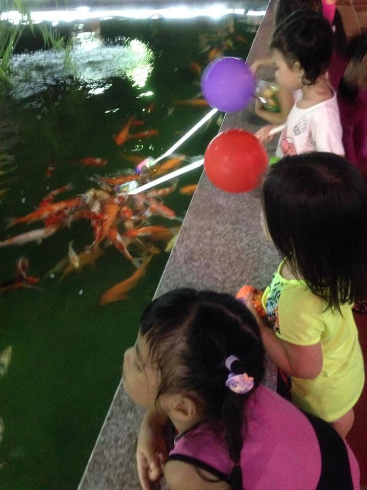 """Cá """"bú bình"""" đã xuất hiện ở Việt Nam - Ảnh 4"""