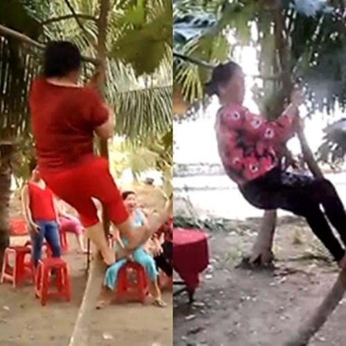 Cười nghiêng ngả với clip quý bà leo cây, nhảy nhạc sàn bốc lửa - Ảnh 2